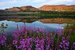 wall lake, flattops wilderness
