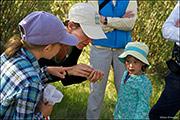 bioblitz, Audubon Rockies