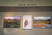 Sage Spirit Exhibit I