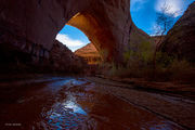 coyote Gulch, national monument