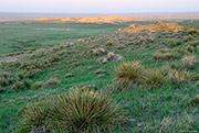 Pawnee grassland, spring prairie