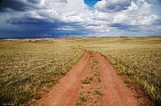 Phantom Road