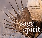 Sage Spirit Book Cover