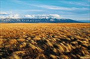 great sand dunes national park, the nature conservancy