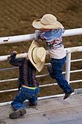 cody night rodeo, Western