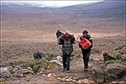 porters, Kilimanjaro National Park