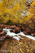 Boulder Creek, Eldorado State Park, Colorado