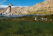 Fishing The Greybull