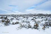 Colorado's eastern plains, Pawnee National Grassland
