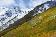 Hayden mountain, san juan mountains, uncompahgre national forest