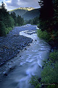 white river, Mount Rainer National Park