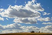 dustbowl, homestead, Yuma County, CO