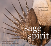 Sage Spirit Book - Coming Soon!