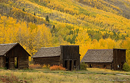 White River National Forest, Ashcroft, ghost town