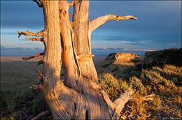 Jack Morrow Hills, Pacific Butte, Atlantic Butte