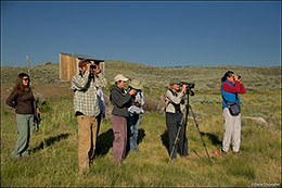 Soda Lake Wildlife Management Area, audubon rockies, bioblitz