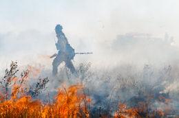 controlled burn, shortgrass prairie