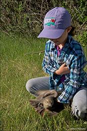 Soda Lake Wildlife Management Area, audubon rockies bioblitz