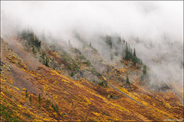 Uncompahgre National Forest, CO, Ouray, Silverton, million dollar highway
