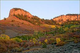 gambel oak, black mesa, sagebrush uplands, black canyon gorge, aspen