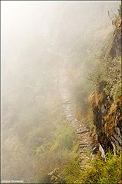 Inca Trail in Fog