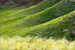Comanche National Grassland, shale hills