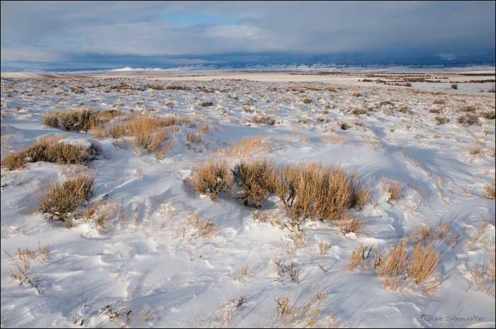 Arapaho National Wildlife Refuge, Walden, Colorado, photo