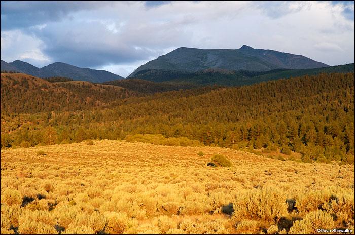 Warm sunset light turns sagebrush gold below Culebra Peak (14,069') on Cielo Vista Ranch. We were paying guests of the...
