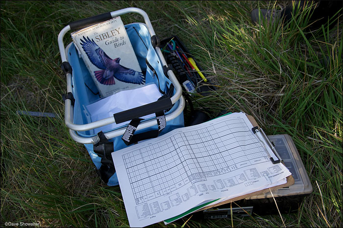Tools for identifying and recording songbirds at the Audubon Rockies bioblitz event on June 23, 2012. Soda Lake Wildlife...