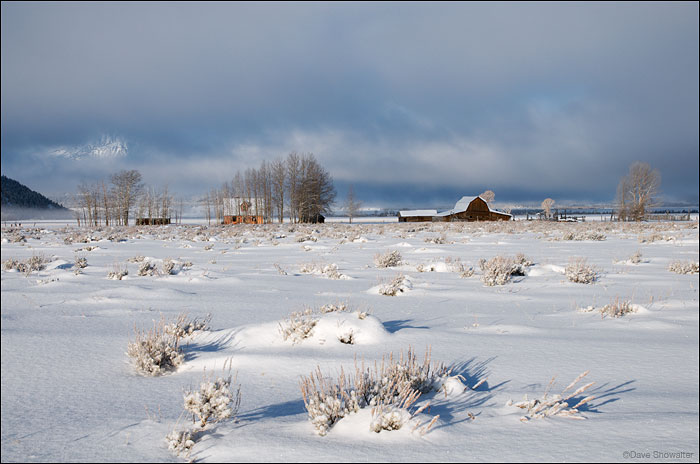 mormon row, antelope flats, teton range, photo