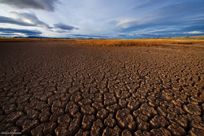 Golden light in late afternoon highlights to texture in dried mud and golden grasses of a playa in the Oregon Basin.