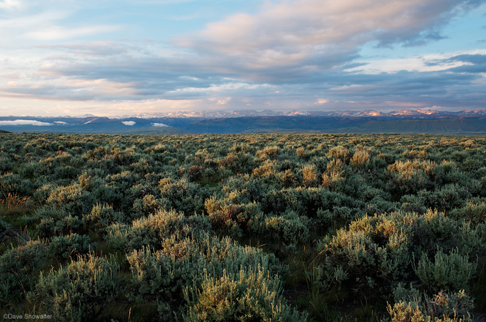 Pinedale Anticline, wind river range, photo