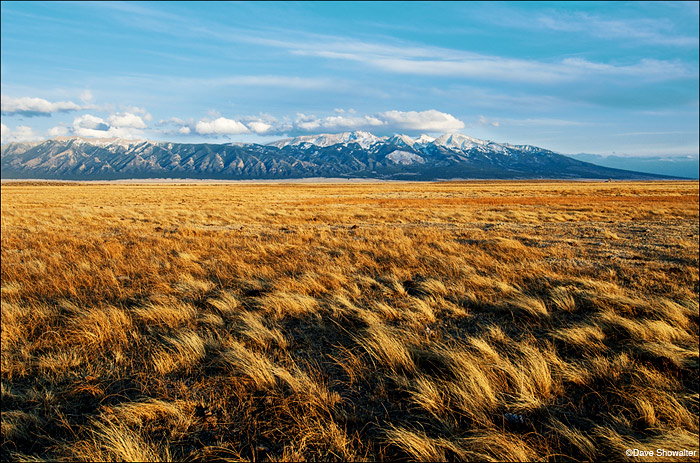 great sand dunes national park, the nature conservancy, photo