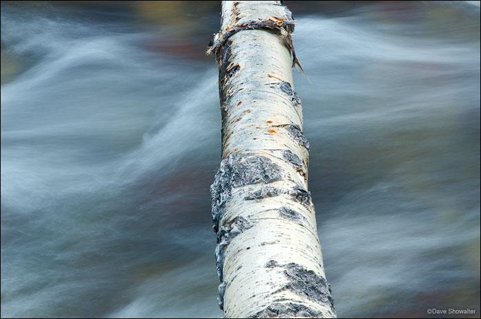 snowmass creek, aspen, photo