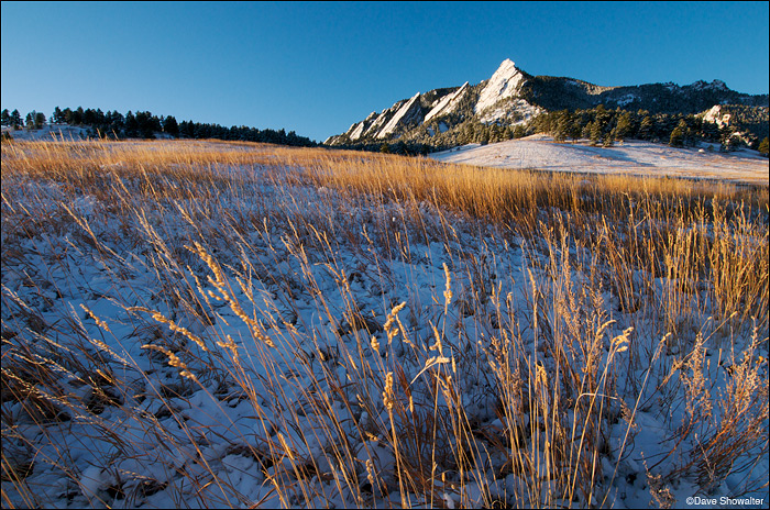 tall grass, flatirons, chautauqua, photo