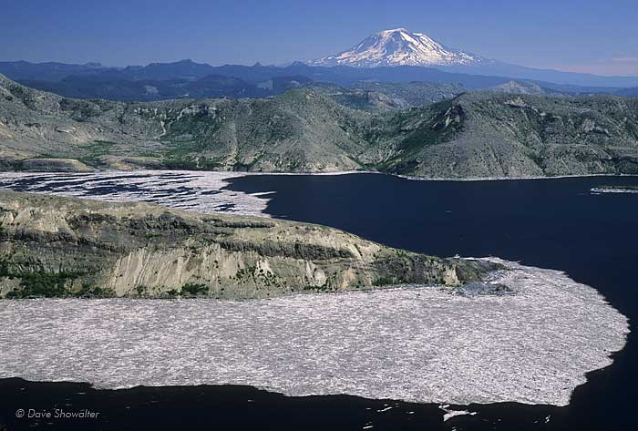 Spirit Lake, floating forest, Mount Saint Helens National Volcanic Monument, photo