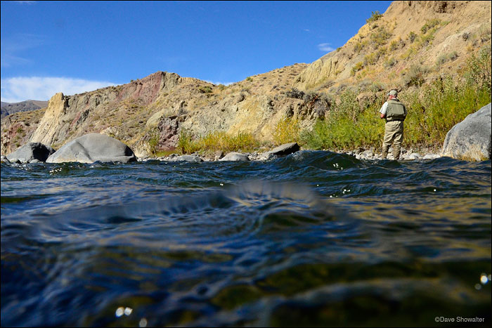 Dave Sweet of Trout Unlimited fishes for Yellowstone cutthroat trout on the upper Greybull River.