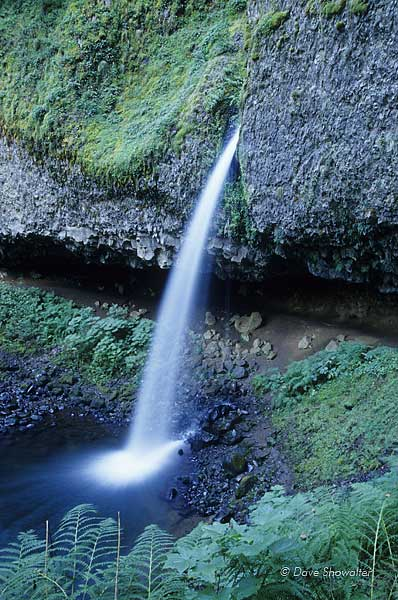 Little Horsetail falls, Columbia River Gorge National Scenic, photo