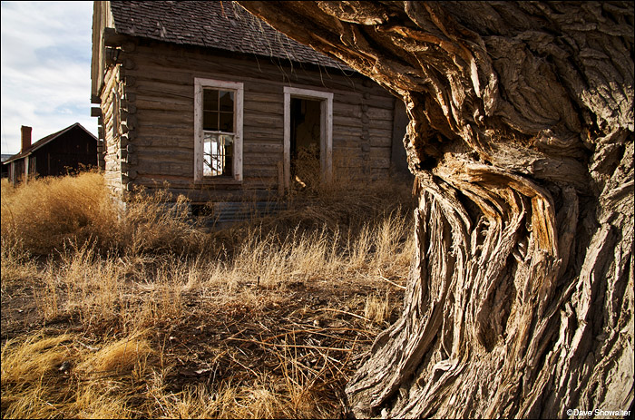 The 1850's homestead at Zapata Ranchhas a tons of character and endless photo possibilities - there's this one spot...