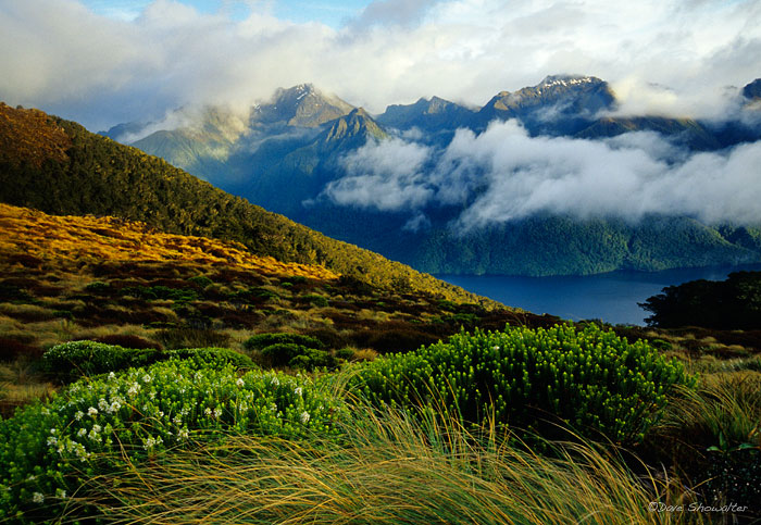 Murchison Mountains, Fiordland National Park, New Zealand, photo
