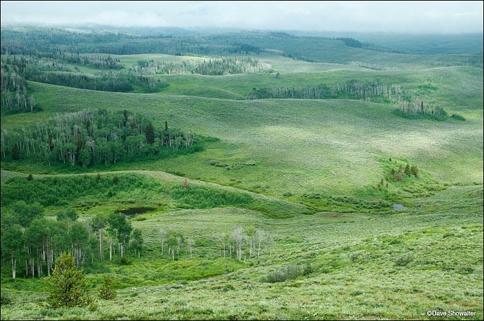 noble basin, wyoming range, photo