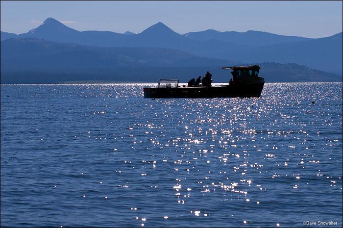 yellowstone lake, sheepshead fishing boat, lake trout removal, photo