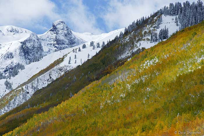 A heavy snow blankets the San Juan Mountains and Hayden Mountain as aspen trees are reaching peak autumn color.