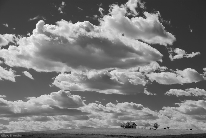 Yuma County, CO, dustbowl, photo