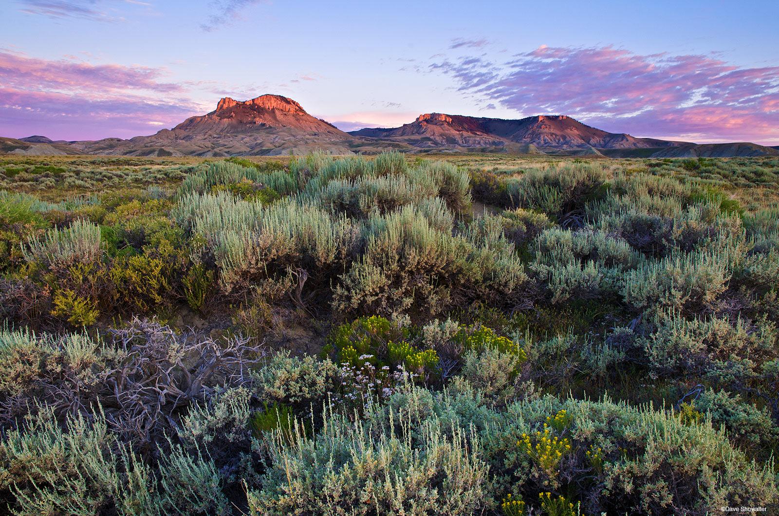 oregon buttes, oregon trail, sagebrush, sage, red desert, jack morrow hills