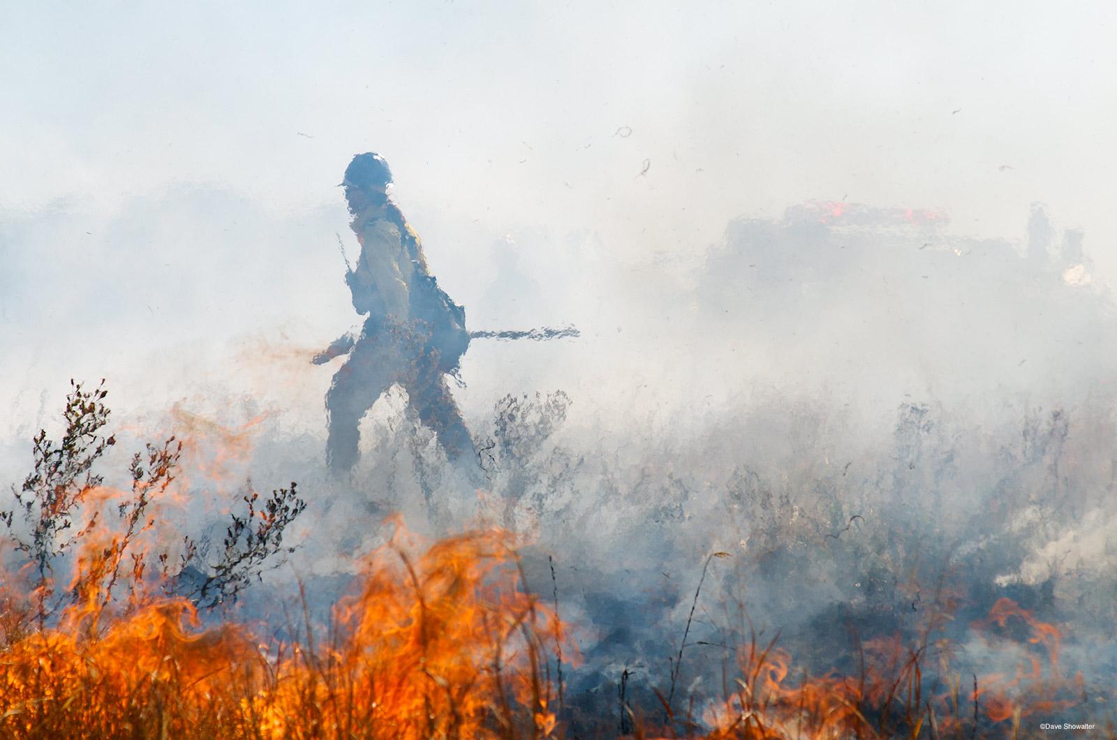 controlled burn, shortgrass prairie, photo