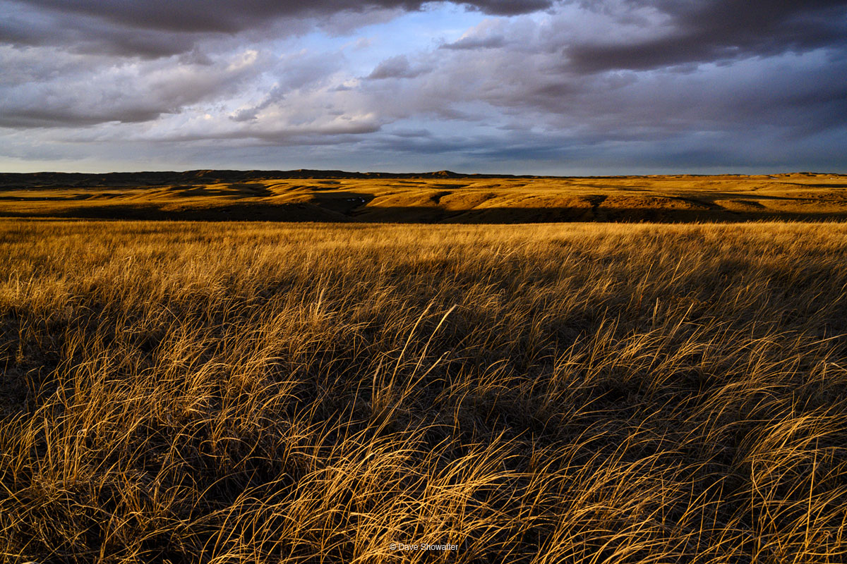 soapstone prairie, grassland, photo